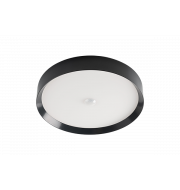 LED Ceiling Light RGBW Tree Anthracite